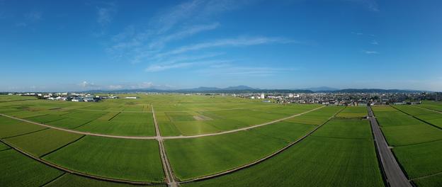 写真: 猛暑の田園風景を180度パノラマ撮影