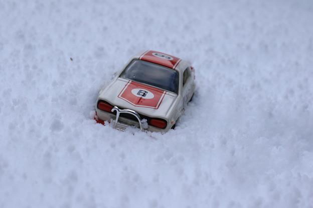 Photos: 大雪のためレースは中止(笑)