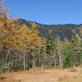 151016-137焼岳登山と上高地・田代池付近