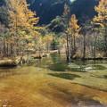 151016-140焼岳登山と上高地・田代池