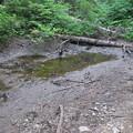 180726-24再挑戦「霞沢岳登山」・小さな池