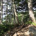 180726-26再挑戦「霞沢岳登山」・P2山頂