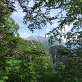写真: 180726-33再挑戦「霞沢岳登山」・穂高連峰