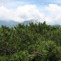写真: 180726-68再挑戦「霞沢岳登山」・K2ピークからの360度 (4/10)
