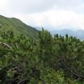 写真: 180726-69再挑戦「霞沢岳登山」・K2ピークからの360度(5/10)