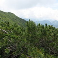 写真: 180726-69再挑戦「霞沢岳登山」・K2ピークからの360度 (5/10)