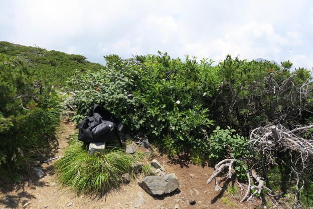180726-79再挑戦「霞沢岳登山」・霞沢岳からの360度(4/9)