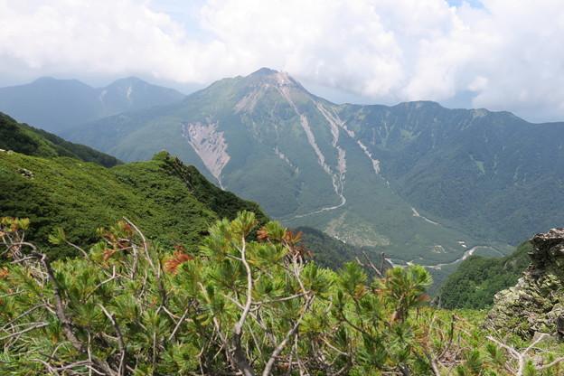 Photos: 180726-85再挑戦「霞沢岳登山」・霞沢岳からの焼岳