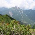 写真: 180726-85再挑戦「霞沢岳登山」・霞沢岳からの焼岳