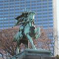 写真: 190107-44はとバス・東京1日・皇居・楠木正成像