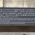 190107-53はとバス・東京1日・皇居・楠木正成