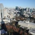 190107-107はとバス・東京1日・東京タワ・大展望台からの景色