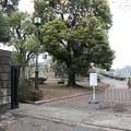 190331-117日比谷公園界隈散策・国会前庭洋式庭園入口