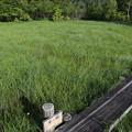Photos: 190725-30大江湿原と尾瀬沼・尾瀬沼時計回り一周・小沼に到着