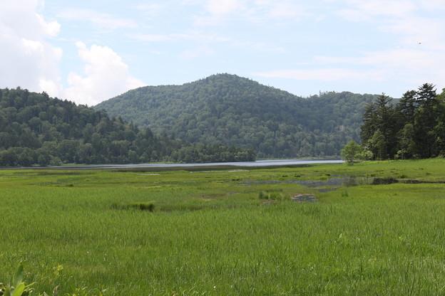 190725-57大江湿原と尾瀬沼・尾瀬沼反時計回り一周・尾瀬沼を左に見る