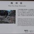 190901-100皇居一周・皇居東御苑・梅林坂