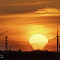 Photos: 風車と電球