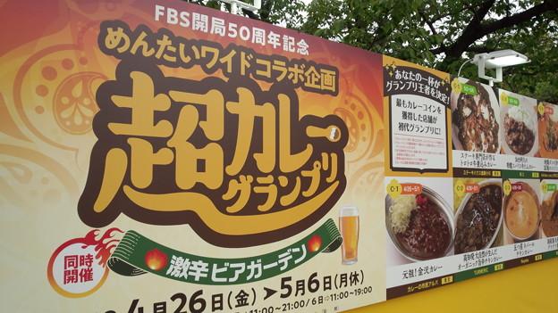 舞鶴公園で超カレーグランプリ。全国から集まってるのに福岡のカレー食べる。6日まで通ったら制覇出来るかな。