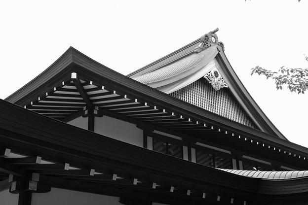 写真: 靖国神社1
