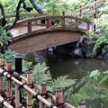 写真: 庭園