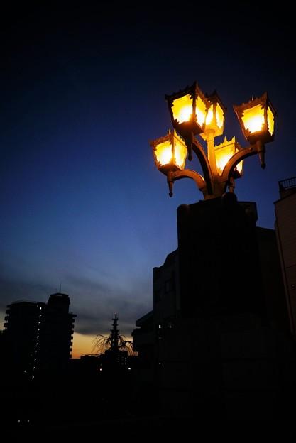 Photos: 橋の灯り
