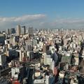 通天閣・特別展望台「天望パラダイス」からの景色