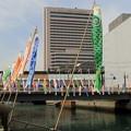 南海堺駅前 土居川の鯉のぼり