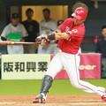 Photos: 野間峻祥