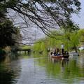Photos: 柳川川下り