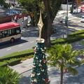クリスマス、街の風景。