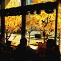 写真: 御堂筋のカフェA