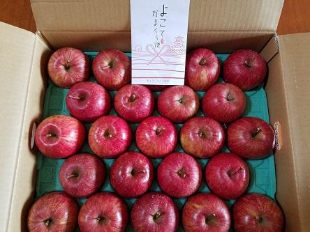 横手産りんご「サンふじ」