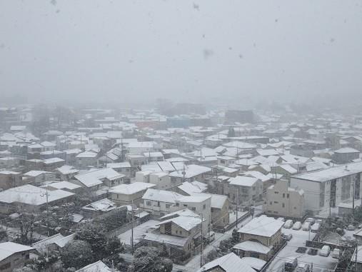 積雪(2018年2月2日7:12撮影、さいたま市浦和区にて)