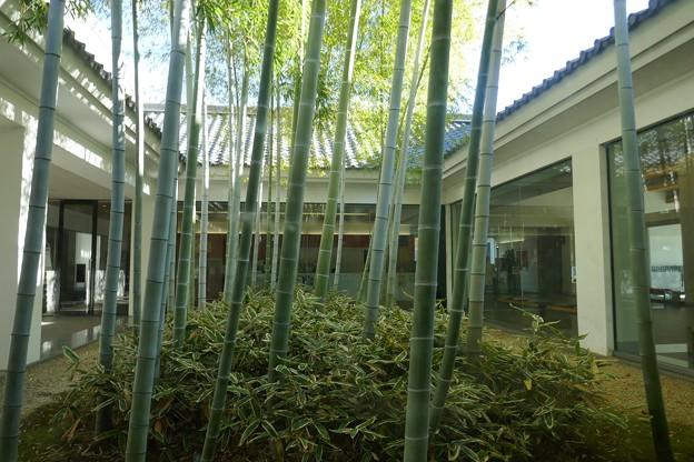川越城P1100463