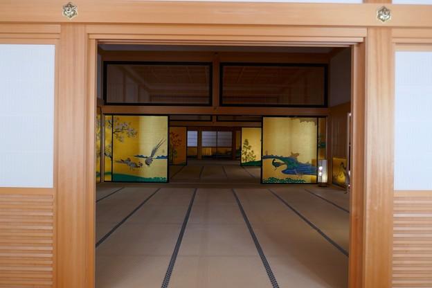 名古屋城P1140540