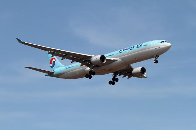 A330 久しぶりのKAL