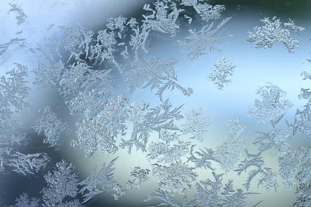 霜消えゆく B
