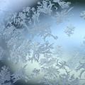 写真: 霜消えゆく B