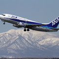 Photos: B737-500 JA8196 takeoff
