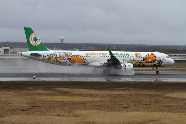 Photos: A321 EVA 雨のrevers