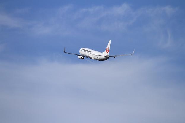 B737 JAL 空へ