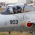 写真: F-15 203sq Disarming (4)