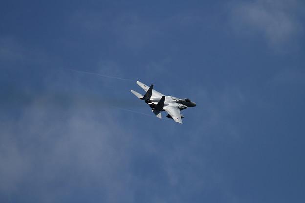 F-15J Flight x3 (3)