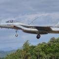 写真: F-15J 915 204sq approach
