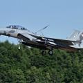 Photos: F-15DJ 098 Aggressor approach