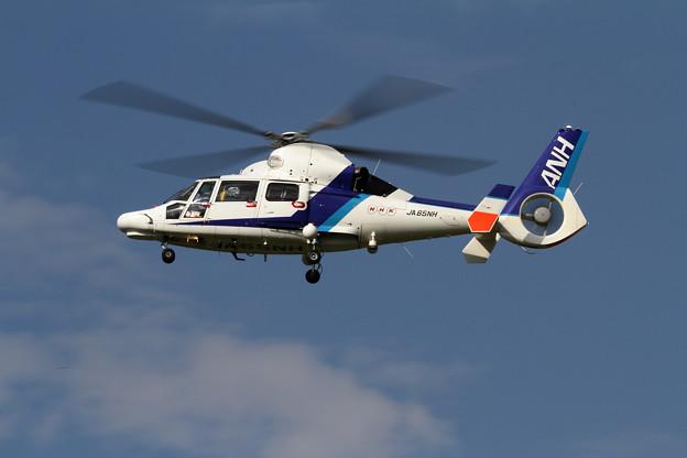 Eurocopter AS365N3 JA65NH ANH