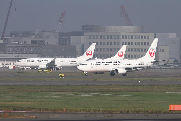 B737-800 JALとJTA