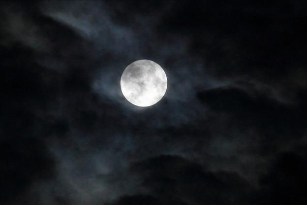 Photos: 中秋の名月 月齢は14.4 (2)