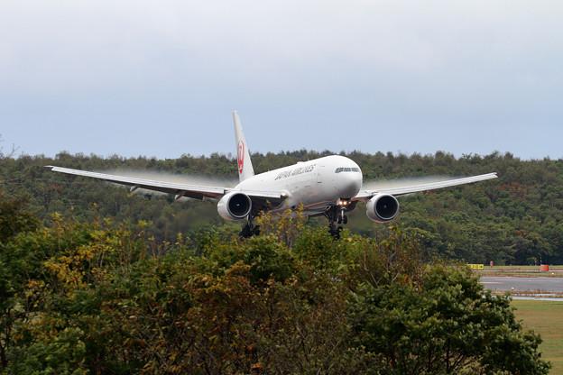 B777 JAL JA8977 landing