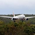 写真: B777 JAL JA8977 landing